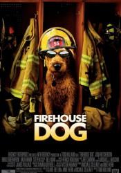 ПОЖАРНЫЙ ПЕС (FIREHOUSE DOG) 2006