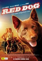 РЫЖИЙ ПЕС (RED DOG) 2011